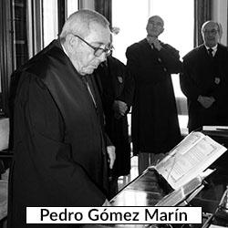 Pedro Gómez Marín